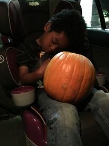 DysonSleepPumpkin